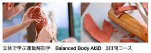 3D解剖学の案内