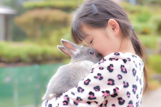 うさぎを抱っこする女の子