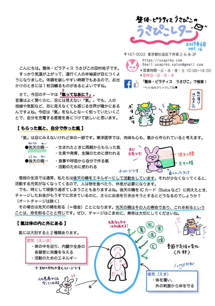 うさぴこレター201906表