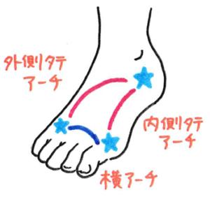 足のアーチのイラスト